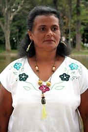 Lavadeira Teresa Novais